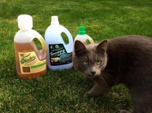 A macskák már nem Whiskast vennének, hanem emezt. :D